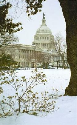 Capitol building in the snow, Washington, D.C.