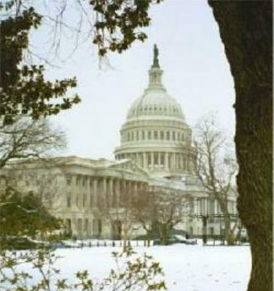 U.S. Capitol Building in the snow